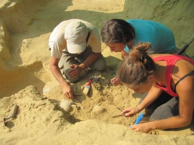 scavi tombe micenee