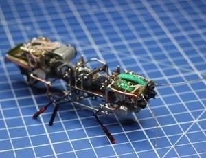 scarafaggio robot