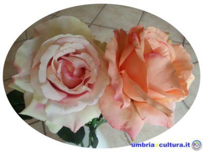 rose in seta maria altamura