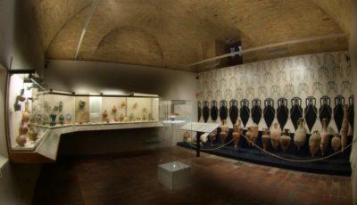 museo del vino torgiano muvit