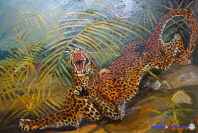 leopardo ligabue