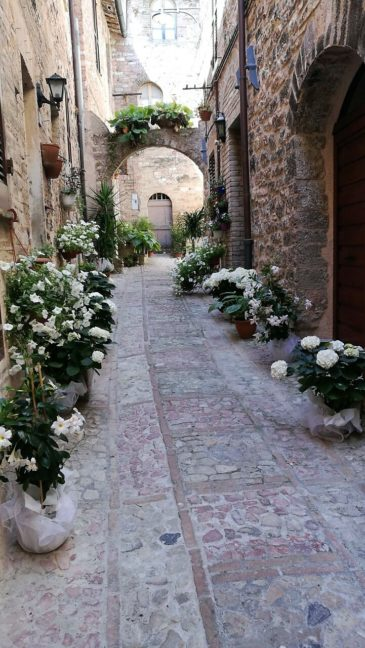 communities in bloom spello