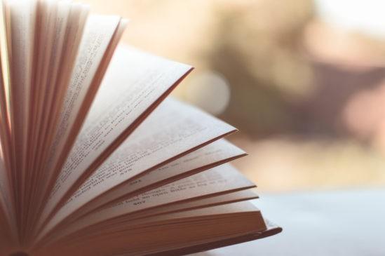 libri febbraio la rosa dell'umbria