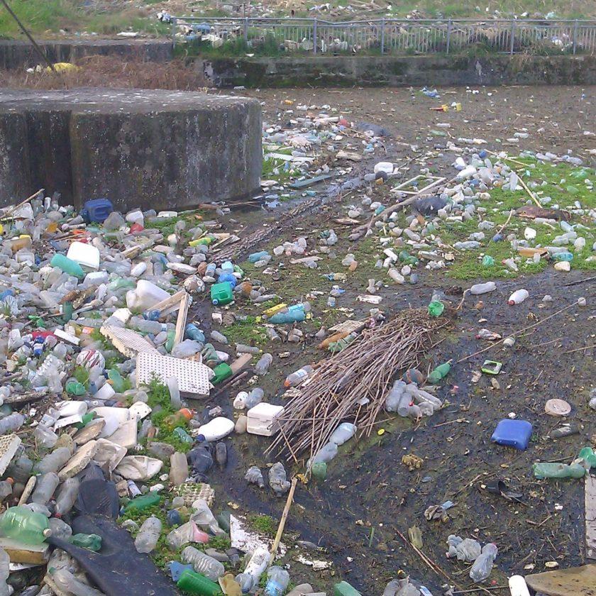 marevivo inquinamento da plastica eco-compattatori plastic free