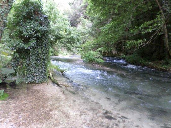 correnti del nera valnerina ecosistemi acquatici