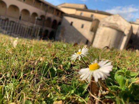 spoleto romana