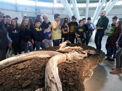 museo paleontologico di pietrafitta