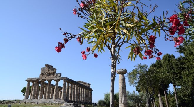 A Paestum la XXII Borsa Mediterranea del Turismo Archeologico