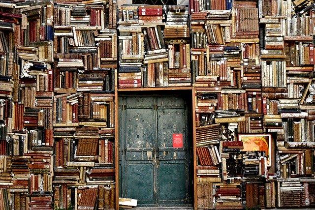 parete di libri studenti rifugiati