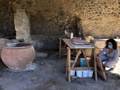pompei conceria della regio i