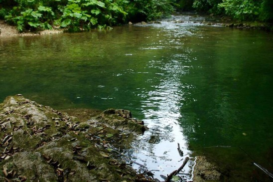 fiume farfa giornata ecologica